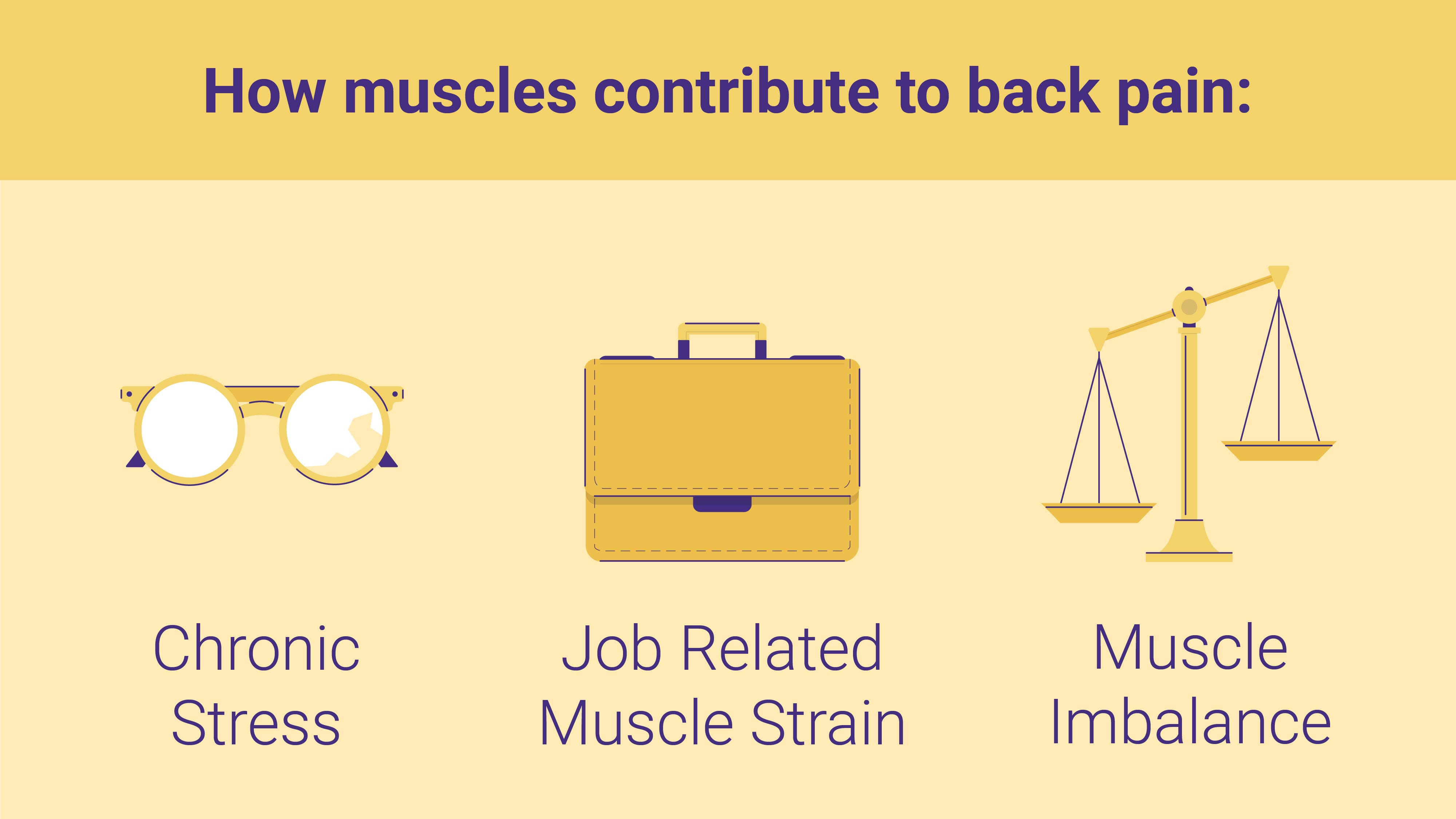 how muscles contribute to back pain